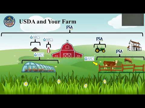USDA Forms Webinar