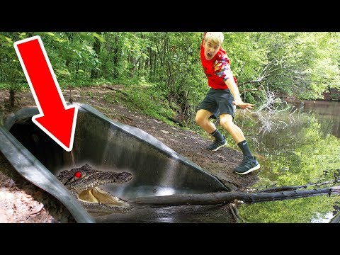 MONSTER IN POND!! (HIDING IN DRAIN PIPE)