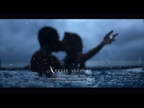 Cinematic Kerala Post Wedding 2015 (HD)