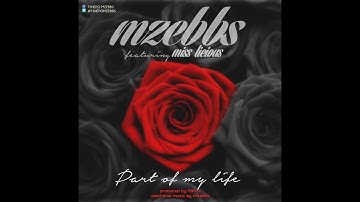 Mzebbs - Part of my life ft Miss Licious