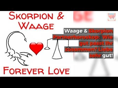 ♡ ♡ Skorpion Waage Horoskop Liebe