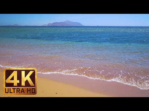 The Red Sea Views - 4K Ultra HD. Egypt. Trailer