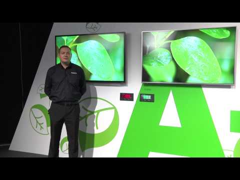Panasonic Convention 2013  - Viera Evolving Energy Efficiency