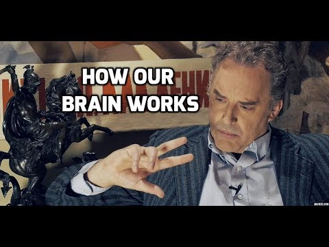 Jordan Peterson On How Our Brain Works