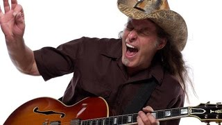 How to play Cat Scratch Fever by Ted Nugent on guitar by Mike Gross