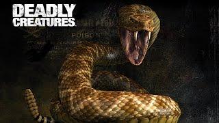 Deadly Creatures - Паук и Скорпион