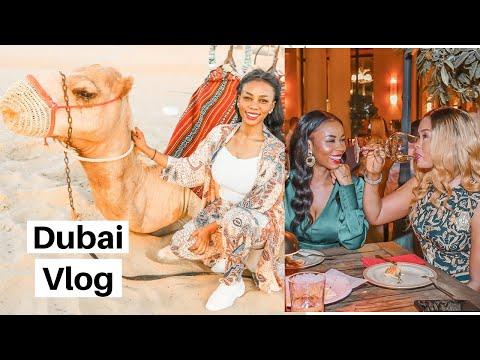 Dubai Vlog| Dubai desert safari |Burj Khalifa| Dubai Mall| Norwegian blogger| Eng sub