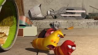 Larva funny scene