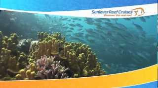 Sunlover Moore Reef Day Thumbnail