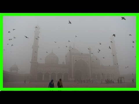 Toxic smog chokes new delhi: why has a pollution emergency been declared?