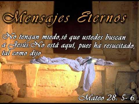 Mateo 28 6