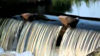 Watch Canon T2i 550D Test Footage Video Sample Bmw X3 In Nyc - Canon T2i 550D Video Sample