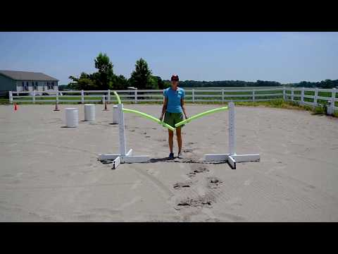 Easy DIY Trail Obstacles You Can Make Yourself!