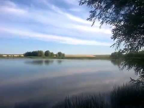 Видео о рыбалке Ловля карася