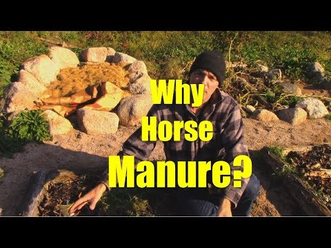 Why Horse Manure Works