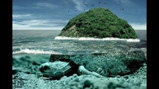 Pulau Kura Kura yang muncul disaat musim 'Semi'