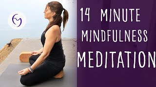 14 Minute Mindfulness Meditation With Fightmaster Yoga