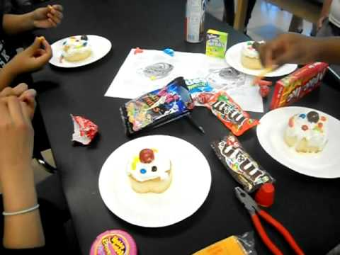 How To Make A Animal Cell Model With Cake