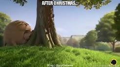 Lustige Tiere nach Weihnachten (Rolling Wild) 😂