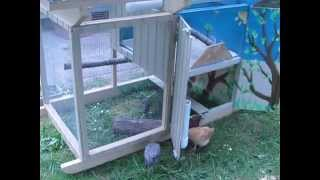 Gardenark Chicken Coop Tour