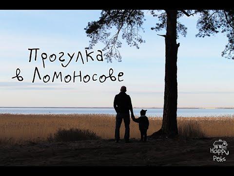 Ломоносов (город) — Википедия