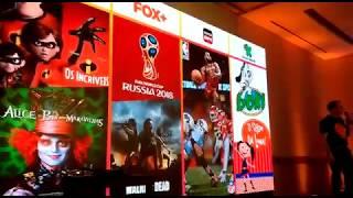 Diretor da Oi fala sobre novos parceiros: Fox+, HBO, ESPN e Discovery Kids