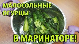 Малосольные огурцы в маринаторе. Быстрый рецепт приготовления!