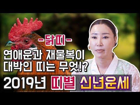 2019년 기해년 띠별 신년운세, 토정비결 (닭띠) 재물복이 대박인 띠는 무엇!? 엑소시스트 서은희