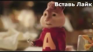 Элвин и бурундуки чеченский
