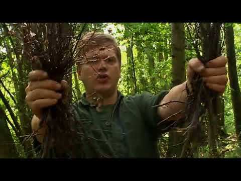 Ray Mears - How to Light a Fire, Bushcraft Survival