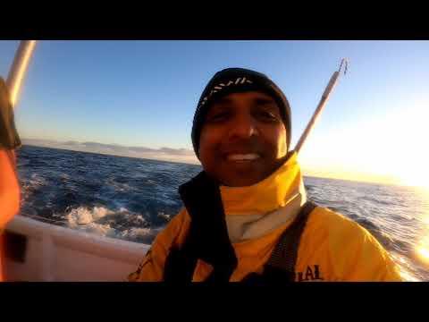 Epic Tuna Fishing Off Cape Point
