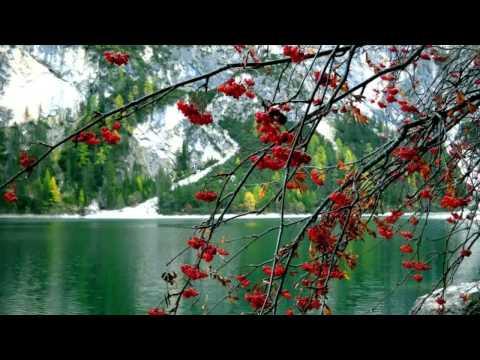 "Music Relax ""White Swan"" very beautiful, best for Yoga, Sleep, Meditation, Relax"