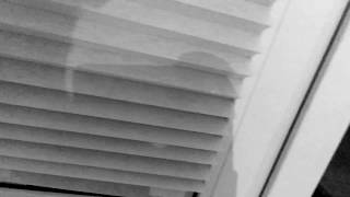 Жалюзи бумажные IKEA 1718, самоклейки, 149 руб. Обзор.