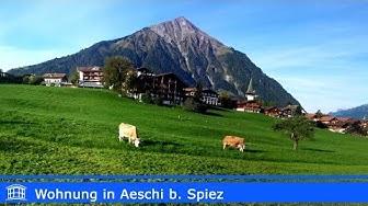 Wohnung in Aeschi bei Spiez | Villa Casa AG
