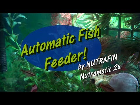 Automatic Fish Feeder By Nutrafin