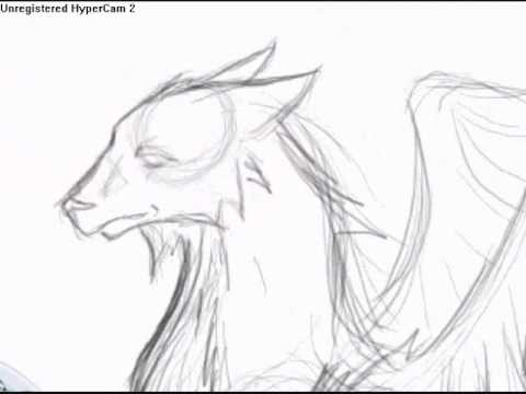 Me Drawing Eagle Wolf Hybrid Youtube