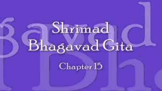Bhagavad Gita - Chapter 15 (Complete Sanskrit recitation)