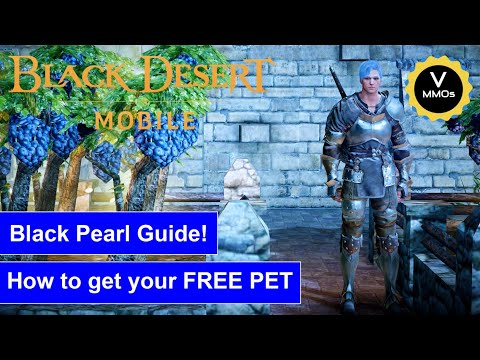 Black Pearl Guide! How to get your FREE PET?! - Black Desert Mobile