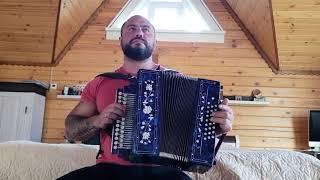 Отзыв гармониста после трех уроков Павла Уханова