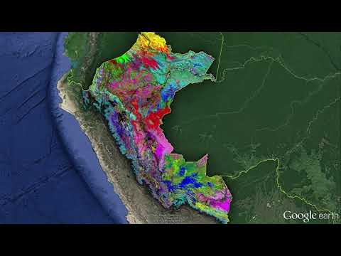 Mapping the planet's biodiversity from the air | Gregory Asner