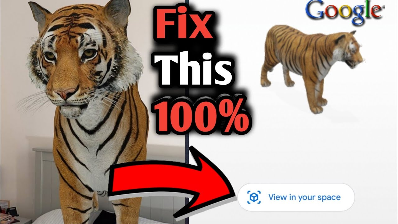 Google Animals 3d View Not Working Tiger 3d View In Your Space Not Showing Problem Solve Youtube