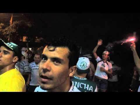 Final da Copa Sadia do Brasil  Palmeiras TRI CAMPEÃO