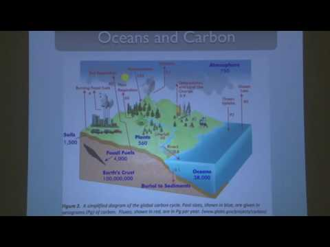 Cody Award Public Lecture: The Role of Ocean Turbulence in Climate