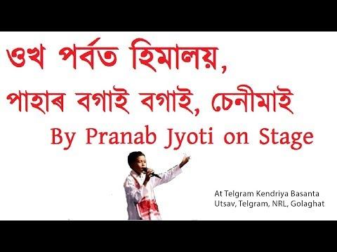 Ukho porbot himalay - Stage Performance by Pranab Jyoti Bora at Telgram, NRL