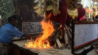 Bull sarcophagi burn in Bali Hindu ceremony