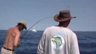 Tuna fishing off Kona, on FLY and light spin rods!