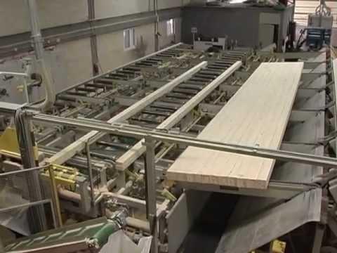 פז עצים - PZ - מפעל ליצור עצים דו ורב שכבתי