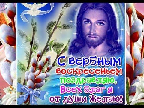 Чудесная музыкальная открытка! Поздравление с вербным воскресеньем!!!