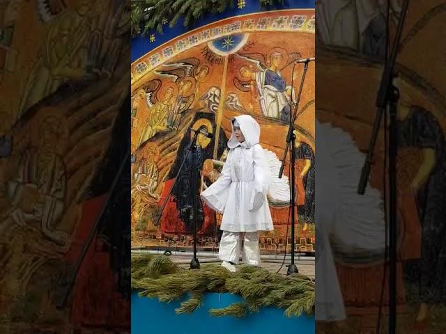 Изображение предпросмотра прочтения – ДаниилЛесных читает произведение «Божий дар» Ф.М.Достоевского