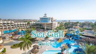 Sea Gull 4 Египет Хургада Отзыв 2019